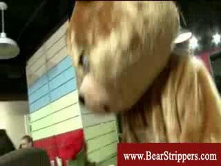 Cfnm teddybear stripper copulates bride